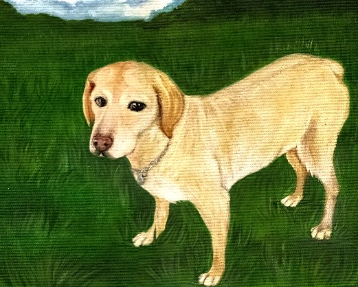 Custom dog portrait by KatCanPaint