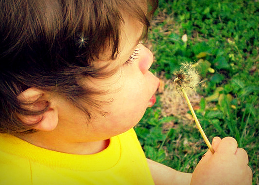 my son with a dandelion by KatCanPaint